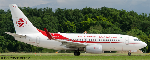 Air Algerie -Boeing 737-700 Decal